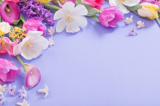 Multicolored spring flowers on  purple background