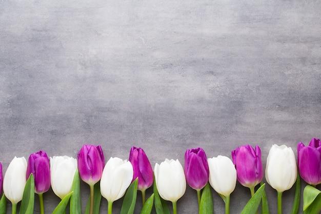 色とりどりの春の花、灰色の背景にチューリップ。