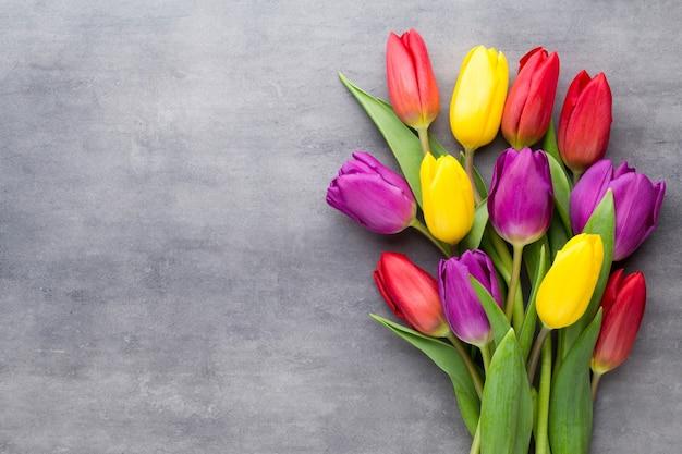 Разноцветные весенние цветы, тюльпан на сером