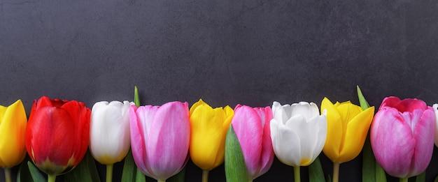 Разноцветные тюльпаны подряд на фоне темно-серой лепной стены.