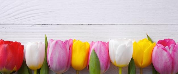 Разноцветные тюльпаны в ряд на фоне легких досок.