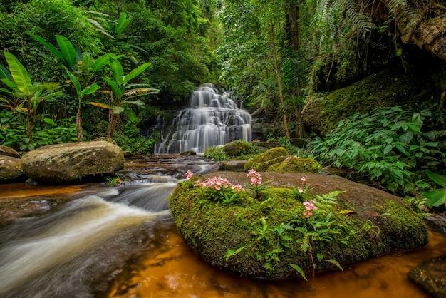 タイ、ペッチャブーン県のキンギョソウの花が咲くムンダンの滝