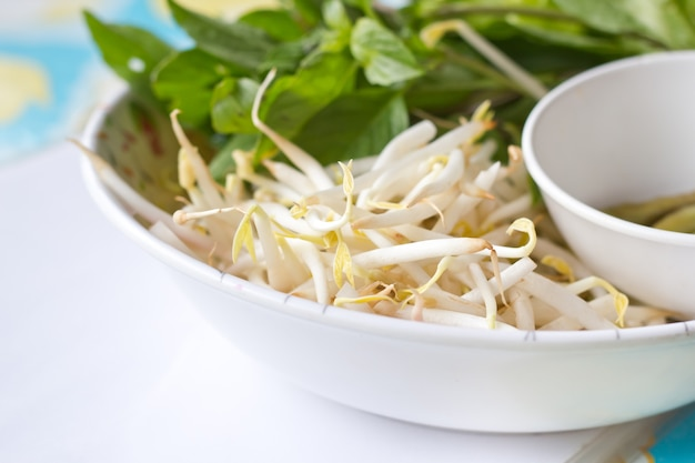 Mung beans or bean sprouts on white plates.