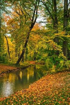 가을 뮌헨 바이에른 독일 뮌헨 영어 정원 잉글 리셔 가르 텐 공원