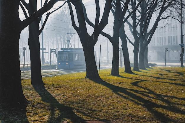 Munich winter day