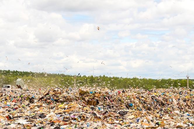 discarica comunale in discarica. inquinamento ambientale.