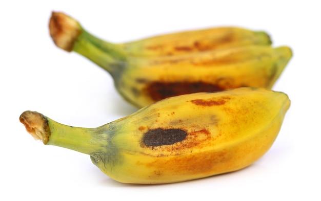 "Musa balbisiana ãƒâ¢ã'â€ã'â"" 동남아시아의 야생 바나나"