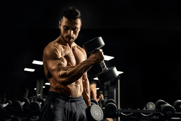 Muscular bodybuilder training biceps with dumbbell.