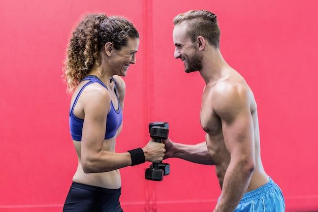 互いに向かい合っている筋肉のカップルダンベルを持ち上げる