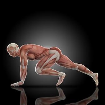 Muscular man doing legs