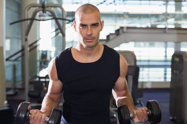 Muscular man exercising with dumbbells in gym
