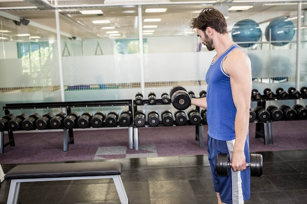 Muscular man lifting dumbbell at the gym