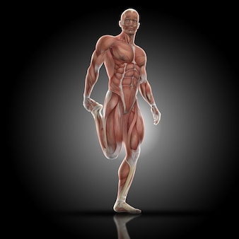 Muscular man stretching quadriceps