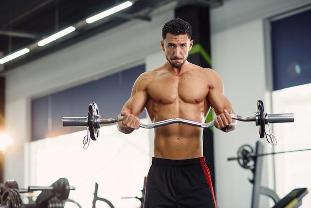 바벨과 팔뚝 운동을하고 완벽한 몸매를 가진 근육 남자. 현대적인 체육관에서 운동하십시오.