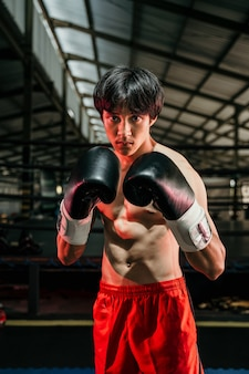 Muscular young man stand wearing boxing gloves in the arena