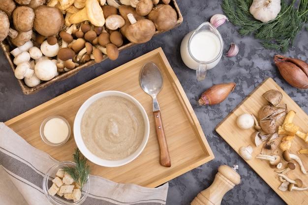Mushroom cream soup with wild fungi, top view