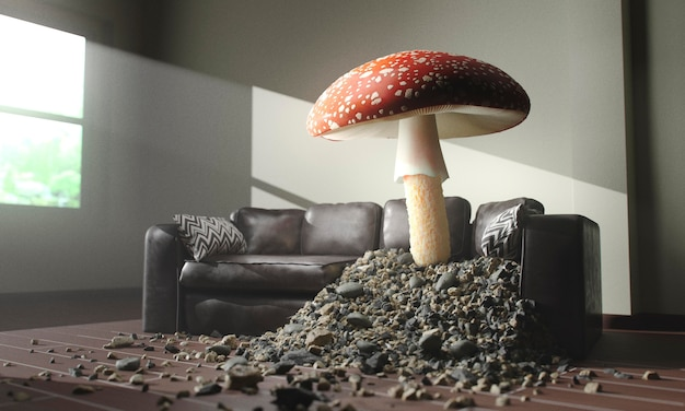 Mushroom growing through a sofa