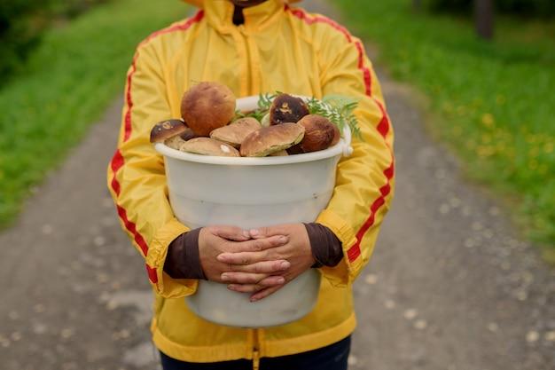 きのこの収穫時期。秋の森のキノコのバスケットを持つ女性。