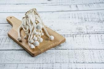 白い木のきのこ