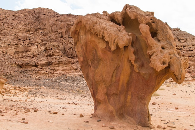 Mushroom rock in colored canyon