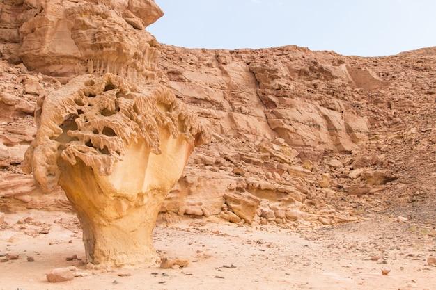 きのこの岩。エジプト、砂漠、シナイ半島、ダハブ。