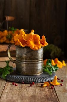 철 복고 그릇에 버섯 살구와 나무 오래 된 배경에 숲 이끼. 조롱. 평면도.