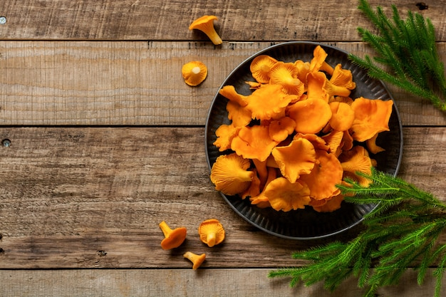 Mushrooms chanterelles in an iron retro bowl and forest moss on a wooden old background.