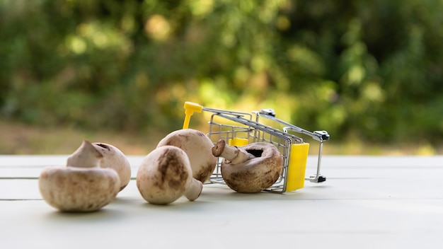 自然の中で小さなおもちゃのカートに入れられたキノコ。