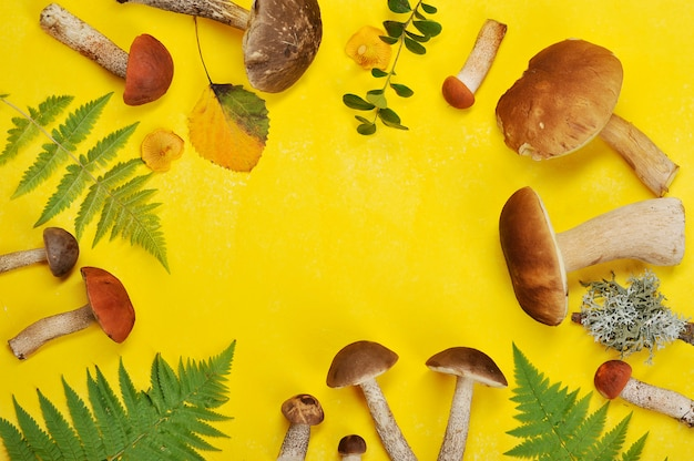 Mushrooms and leaves on yellow background