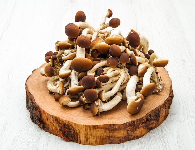 Mushrooms on  wood table