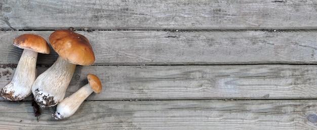 Mushrooms on wooden plank