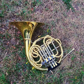 Musical instrument french horn lies on the grass