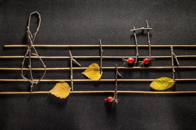 Концепция музыкальных нот. деревянные музыкальные ноты и листья.