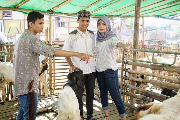 イード犠牲祭の儀式のためにヤギを買う動物貿易農場のイスラム教徒のカップル