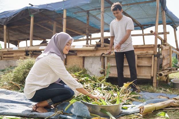 Мусульманская женщина-фермер кормит животных на традиционной ферме
