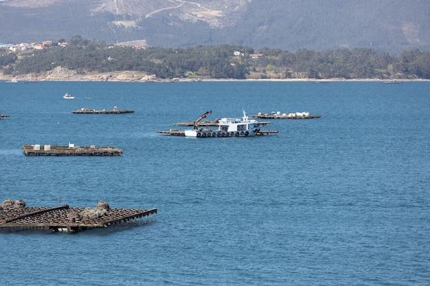 홍합 나무 플랫폼 사이를 항해하는 홍합 보트