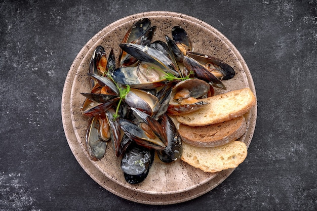 Mussel molluscs in creamy cheese sauce with toasts, on a plate