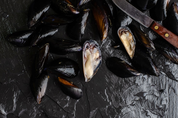 Mussels cooking concept. raw seafood