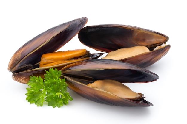 白い背景に分離されたムール貝。シーフード。