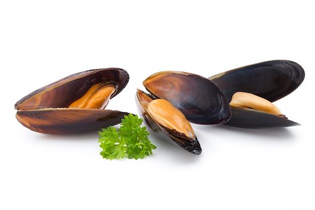 Мидии, изолированные на белом фоне. морепродукты.