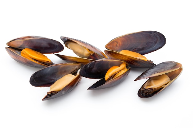 Mussels isolated on white