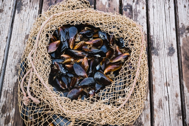 Mussels in shells lie in a fishing net on a pier