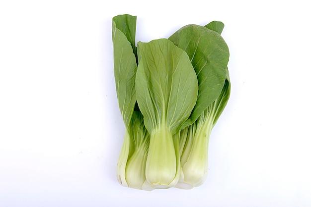 白い背景の上に分離されたマスタードパッコイまたはチンゲン菜