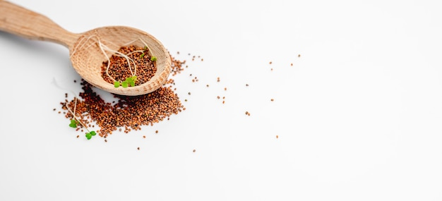 Mustard seeds with organic microgreens sprouts in wooden spoon scattered and isolated on white