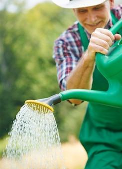 정원에있는 식물은 자라기 위해 물이 필요합니다