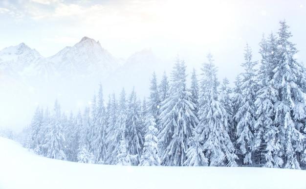 冬の神秘的な冬の風景の雄大な山々。