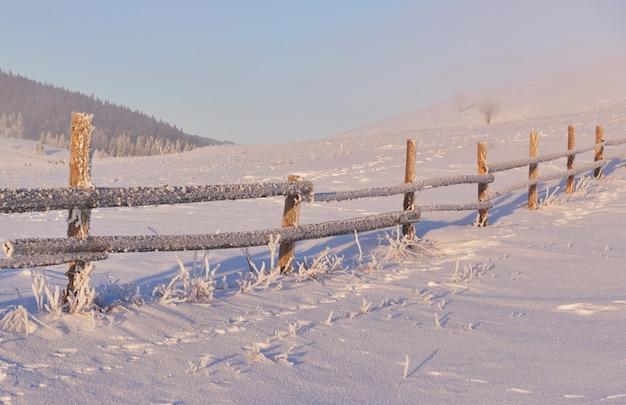 神秘的な冬の風景冬の雄大な山々。魔法の冬の雪に覆われた木。写真のグリーティングカード。カルパチア。ウクライナ