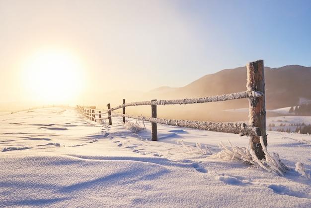 Таинственный зимний пейзаж величественных гор зимой. волшебная зима заснеженного дерева. фото поздравительная открытка. карпатский. украина