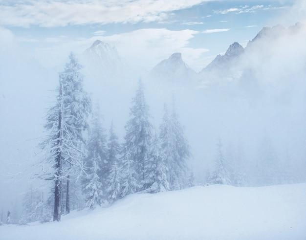 Misterioso paesaggio invernale maestose montagne in inverno.