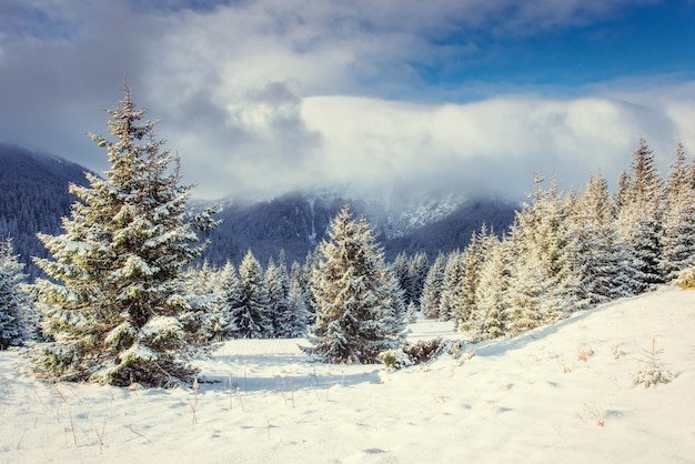 Mysterious winter landscape with fog, majestic mountains